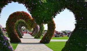 Dubai_Miracle_Garden_10