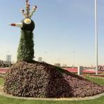 Dubai_Miracle_Garden_37