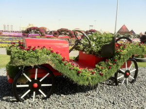 Dubai_Miracle_Garden_41