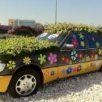 Dubai_Miracle_Garden_42