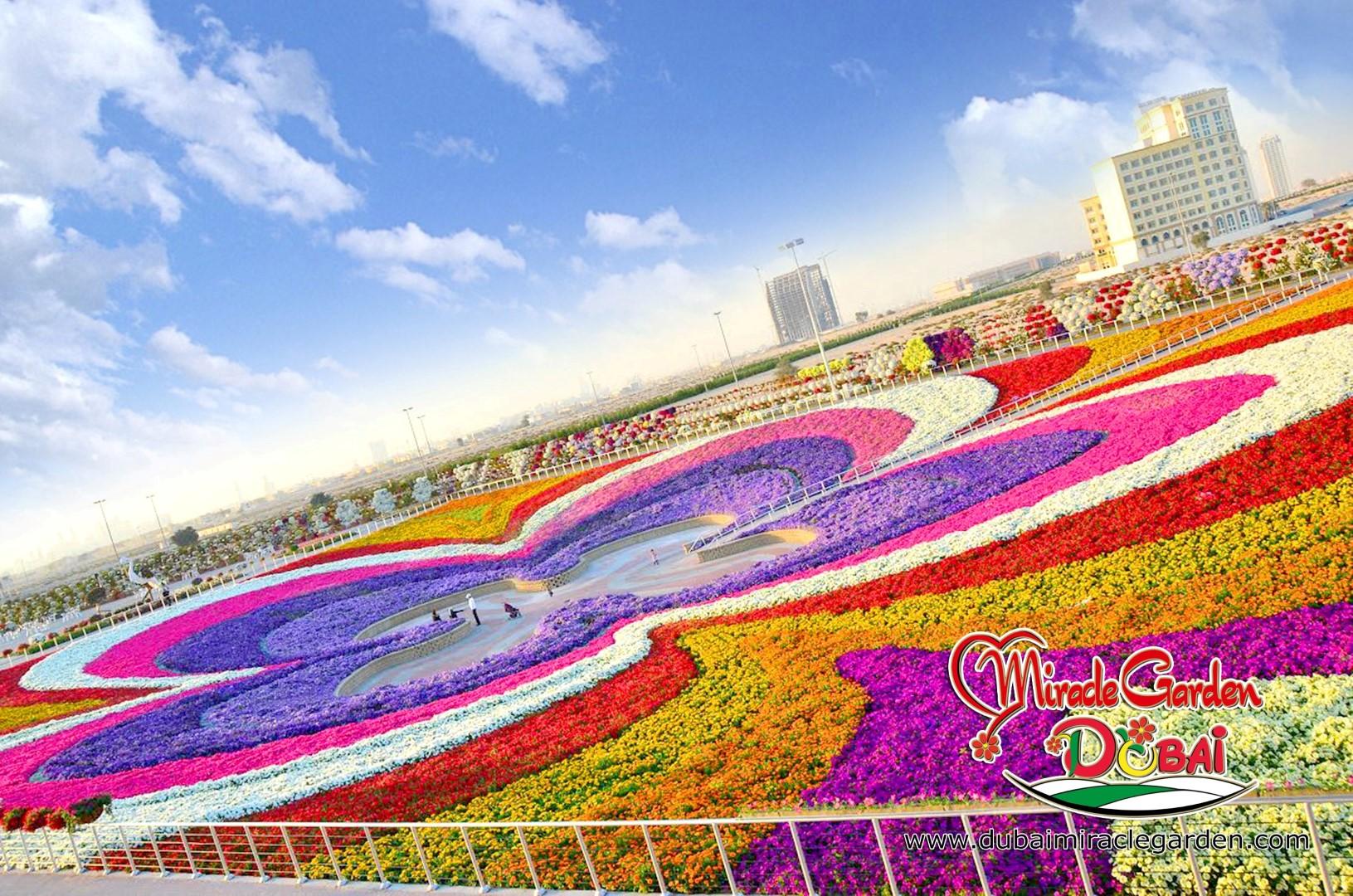 Самый большой в мире парк цветов