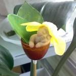 Декор для цветов