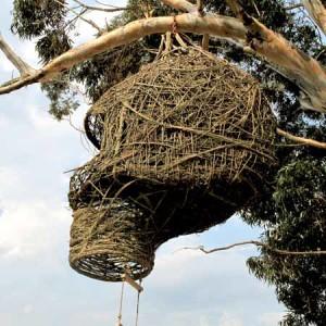 Дом гнездо