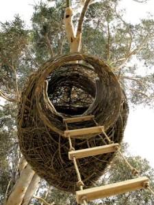 Дом гнездо4