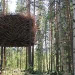 Treehotel45