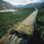"Национальный парк ""Банф"", Альберта, Канада"