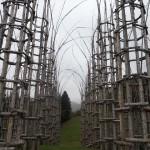 Храм из живого дерева