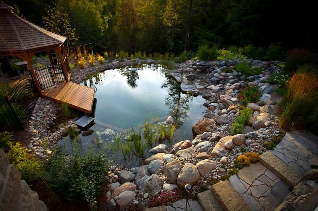 Естественный бассейн — без хлорки и химии