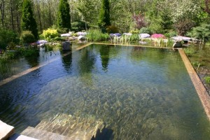 Естественный бассейн