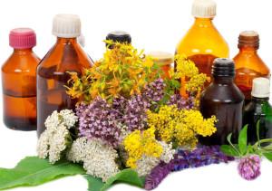 Растения лекари