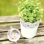 Стеклянная, подвесная ваза