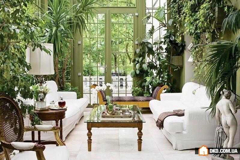 Дизайн комнатных растений в доме