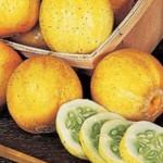 Огурец-лимон, или «Хрустальное яблоко»