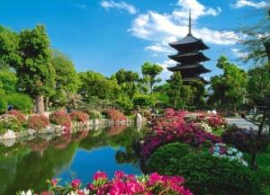 Сезоны парка Асигама