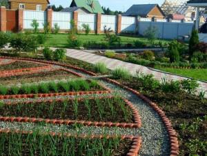 Маленькие хитрости для огорода и сада