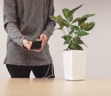 Цветочный горшок с зарядкой для смартфона