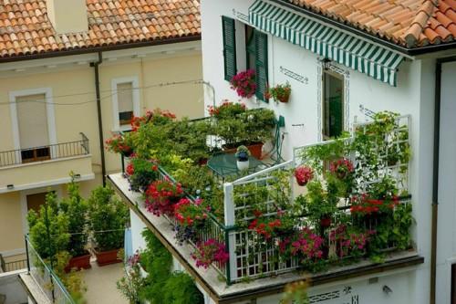 Еще больше зелени на балконе, веранде и участке