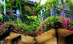 Идеи для цветущих балконов