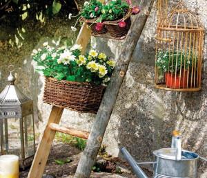 Идеи для цветов на участке