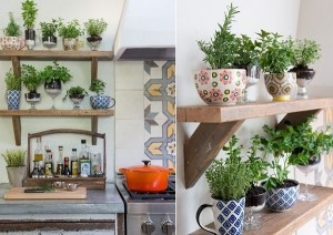 На кухне можно разбить неплохой огородик