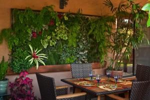 Растение и цвет гостиной