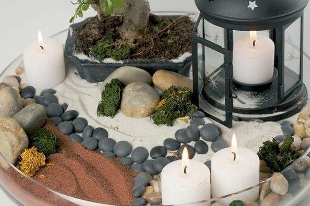 Сад в миниатюре дома