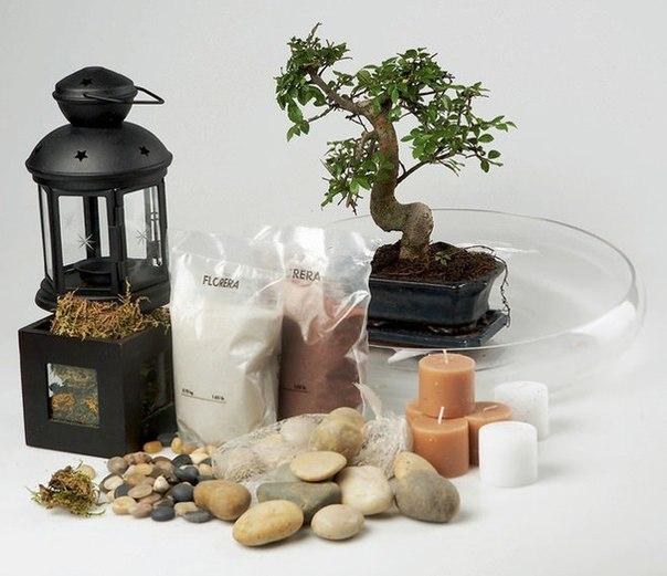 Материалы для создания мини сада