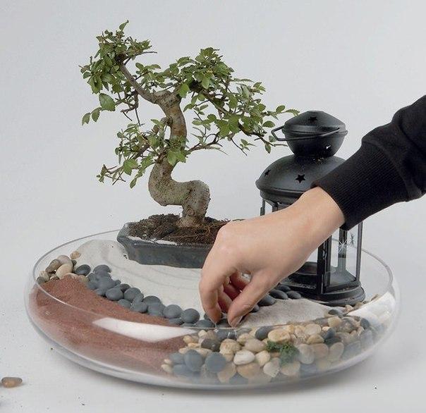 Сад в миниатюре своими руками