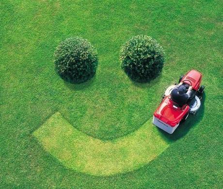 Ремонт газона на лужайке
