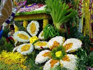 Майский цветочный фестиваль в Сочи