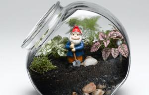 Флорариум — мини-сад за стеклом