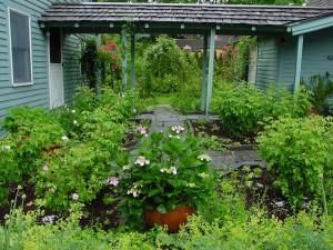 Сады Гертруды Джекилл