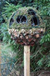 Как привлечь полезных насекомых в сад