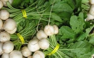 Сеем зелень и овощи летом (Листовая и салатная репы)