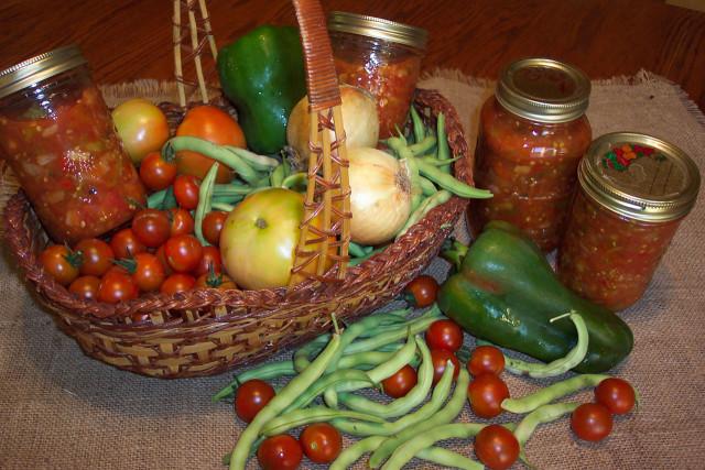 Сеем зелень и овощи летом