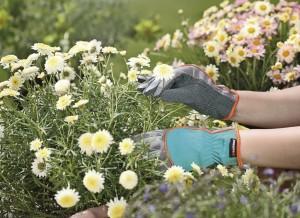 Уход за руками после работы в саду