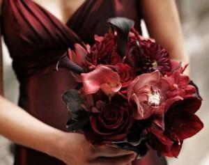 Тёмно-красные цветы