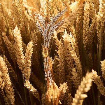 Les Blés (пшеничный колос) de Chanel