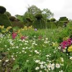 Christopher Lloyd's Gardening Year Journal - Frances Lincoln Publishing