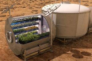 Марсианский огородик