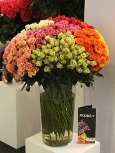 Цветы/Flowers-2016