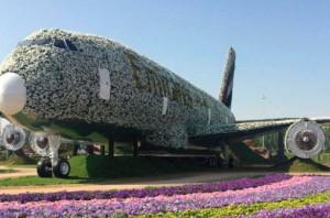 Цветочный аэробус в Книге рекордов Гиннесса