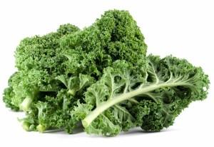 Кудрявая капуста, или Кале, или Грюнколь, или Браунколь, или Брунколь (Brassica oleracea var. sabellica)