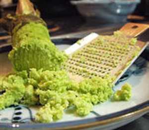 Васаби, или Эвтрема японская (Eutrema japonicum)