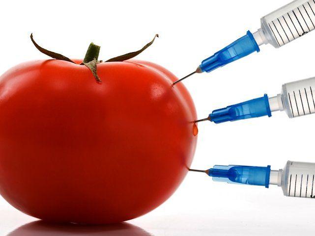 Отказ от пестицидов. Опыт Швейцарии. Альтернатива пестицидам