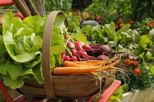 Отказ от пестицидов