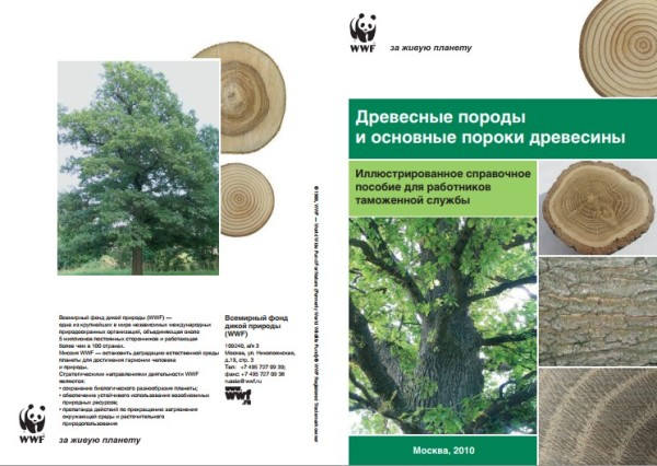Древесные породы и основные пороки древесины