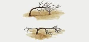 Формирования дерева гнутьем