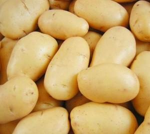 Купить семена, растение – Картофель Сказка (Solanum tuberosum)