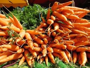 Выращиваем хороший урожай моркови